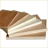 Kailas Commercial Plywood
