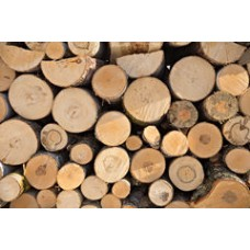 Ranjeet Solid Wooden Timber